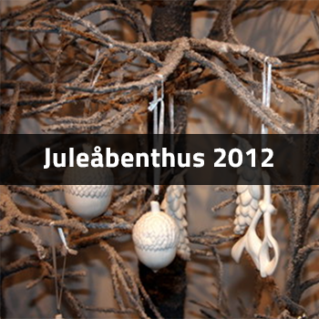 Juleåbenthus 2012 | Birthes Blomster