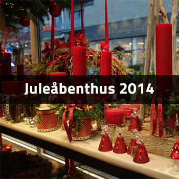 Juleåbenthus 2014 | Birthes Blomster