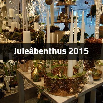 Juleåbenthus 2015 | Birthes Blomster