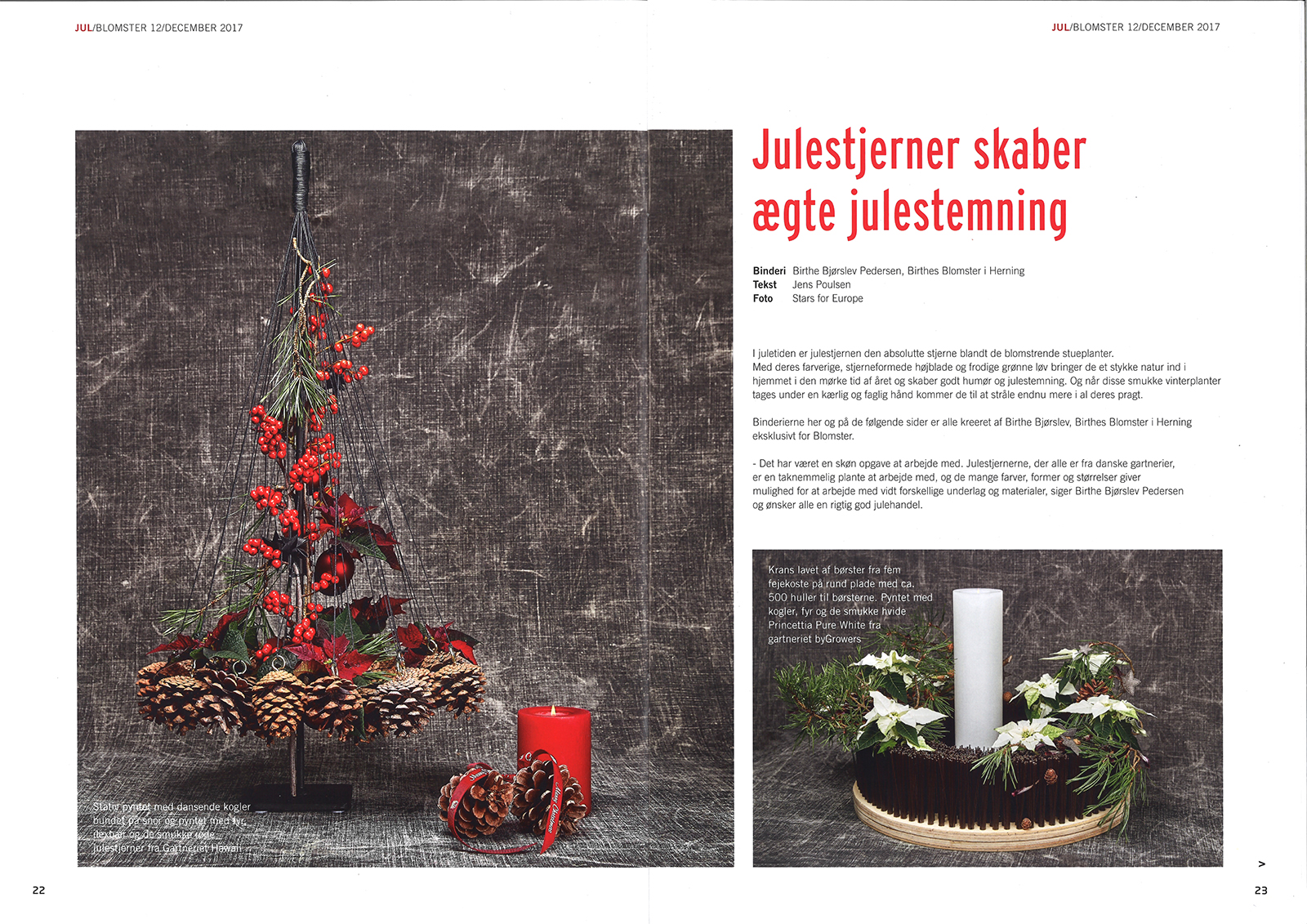Birthes Blomster | Blomster Bladet December 2017