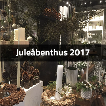 jul 2017 hos birthesblomster i Henring